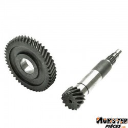 TRANSMISSION SCOOT ADAPTABLE MBK 50 OVETTO 2T-YAMAHA 50 NEOS 2T-APRILIA 50 SR-MALAGUTI F10 (PRIMAIRE 14-46)  -TOP PERF-