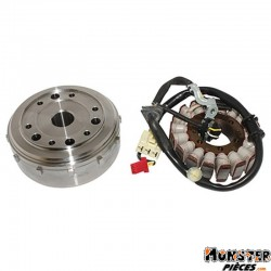 ALLUMAGE MAXISCOOTER ADAPTABLE HONDA 300 SH 2007>2011  -SELECTION P2R-