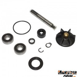 KIT REPARATION POMPE A EAU SCOOT ADAPTABLE PIAGGIO 50 NRG-GILERA 50 RUNNER, DNA (KIT) -BUZZETTI-