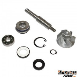 KIT REPARATION POMPE A EAU MAXISCOOTER ADAPTABLE HONDA 125 SH, 125 PANTHEON, 125 DYLAN  (KIT)  -BUZZETTI-