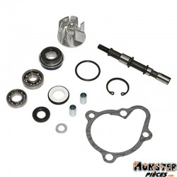 KIT REPARATION POMPE A EAU MAXISCOOTER ADAPTABLE KYMCO 250 DINK 2001>(KIT)  -P2R-