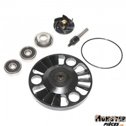 KIT REPARATION POMPE A EAU MAXISCOOTER ADAPTABLE APRILIA 125 ATLANTIC 2002>-GILERA 125 NEXUS 2007> (KIT)  -P2R-