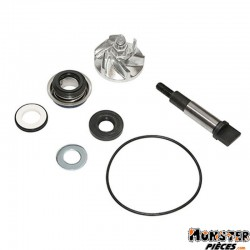 KIT REPARATION POMPE A EAU MAXISCOOTER ADAPTABLE HONDA 300 SH 2007> (KIT)  -P2R-