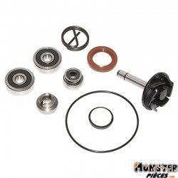KIT REPARATION POMPE A EAU MAXISCOOTER ADAPTABLE PIAGGIO 250 BEVERLY 2004>2005 (KIT)  -P2R-