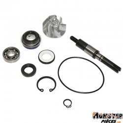 KIT REPARATION POMPE A EAU MAXISCOOTER ADAPTABLE HONDA 125 SH 2001>, 125 PANTHEON 2003>, 125 DYLAN 2004> (KIT)  -P2R-