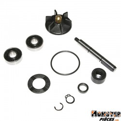 KIT REPARATION POMPE A EAU SCOOT ADAPTABLE PIAGGIO 50 NRG-GILERA 50 RUNNER, DNA (KIT) -SELECTION P2R-