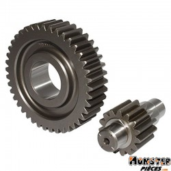 TRANSMISSION MAXISCOOTER MALOSSI POUR PIAGGIO 125 FLY, LIBERTY, MP3, X7, X8, X9, X-EVO- APRILIA 125 ATLANTIC, SPORT-CITY ONE-GIL