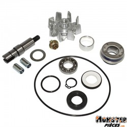 KIT REPARATION POMPE A EAU MAXISCOOTER ADAPTABLE HONDA 400 XCITING 2014> (KIT)  -SELECTION P2R-
