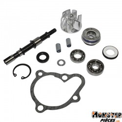 KIT REPARATION POMPE A EAU MAXISCOOTER ADAPTABLE KYMCO 250 BET&WIN, 250 GRAND DINK, 250 PEOPLE S, 250 XCITING, 300 XCITNG, 300 P