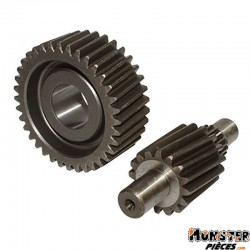 TRANSMISSION MAXISCOOTER POLINI POUR HONDA 250 FORESIGHT, 250 FORZA, 250 JAZZ (16-36, SECONDAIRE) (2021388)
