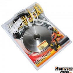 VARIATEUR MAXISCOOTER MALOSSI MULTIVAR 2000 SPORT POUR HONDA 125 FORZA 2015>, 125 SH INJECTION 4T LC EURO3 ABS 2013> (JF41E)